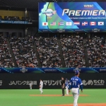 Global Market Report: Baseball one of the top-grossing revenue sports in the world