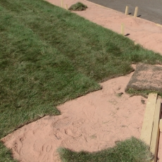 Sept 6 2018 Optimist Park Reno sod almost all down, videos!